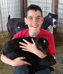 Levi and his goats